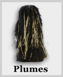 Plumes for Band Headwear