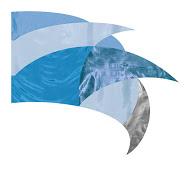 FLST661601 Color Guard Flag- Clearance