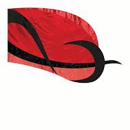 6616RE Color Guard Flag