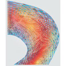 Digital Print Super Swing Flag #805