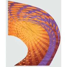 Digital Print Super Swing Flag #808