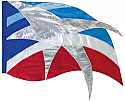 771108 Color Guard Flag